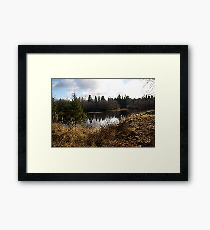 Small river, but very beautiful view Framed Print
