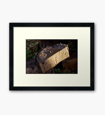 Just wood Framed Print