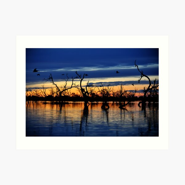 Reflections of the Day, Menindee Lakes, NSW Art Print