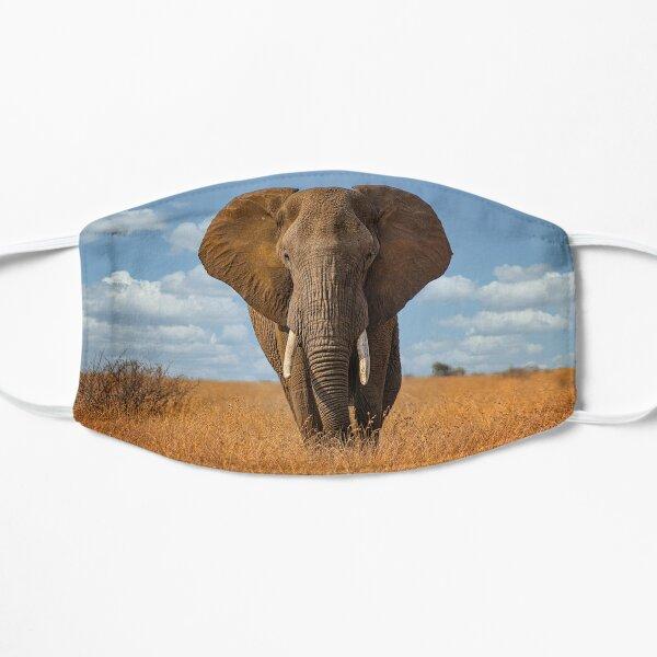 African Elephant in Kruger National Park Flat Mask
