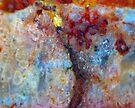 Tree On Fire by Stephanie Bateman-Graham