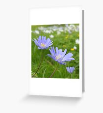 Spring again Greeting Card
