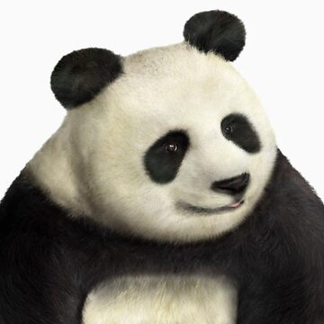 Awesome panda is awesome by Harry1811
