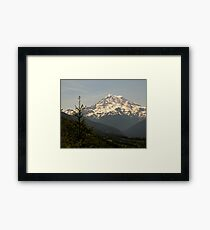 Mt Rainier from Evan's Creek Framed Print