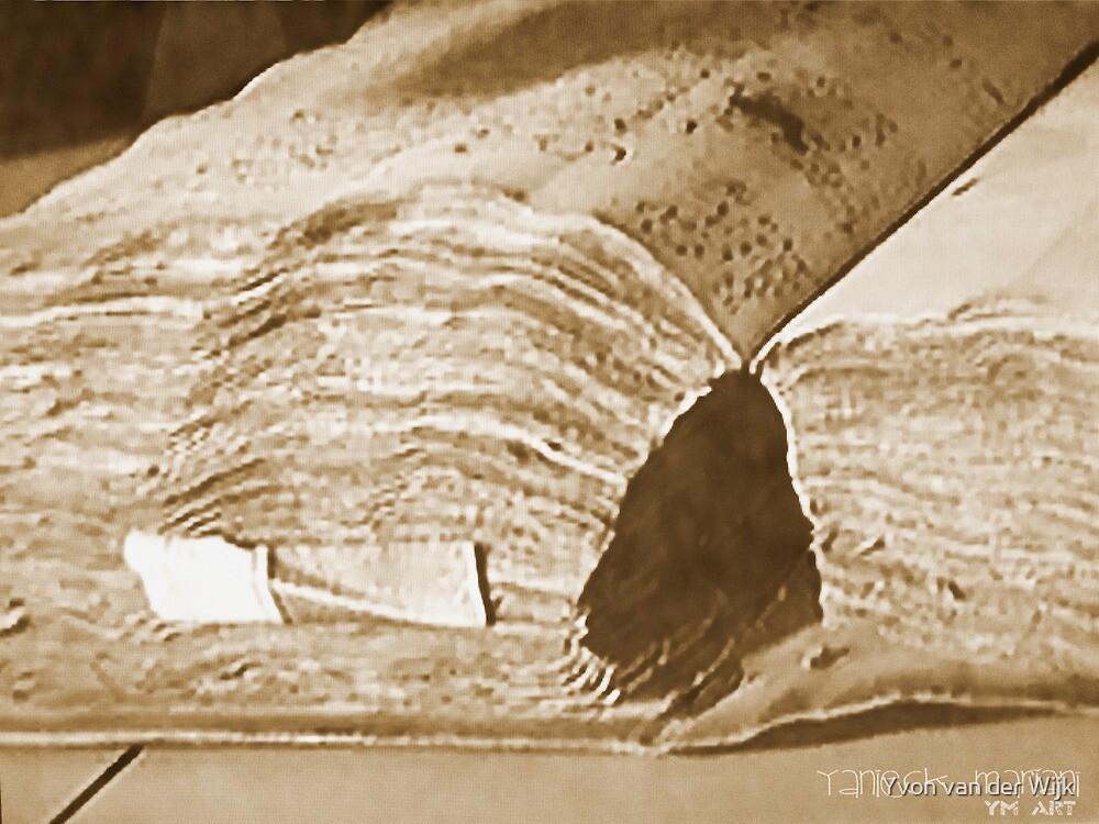 Old Antiek Book by Yvon van der Wijk