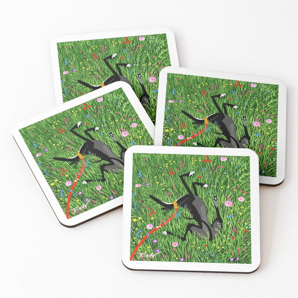 Roaching in the Wildflowers Coasters (Set of 4)