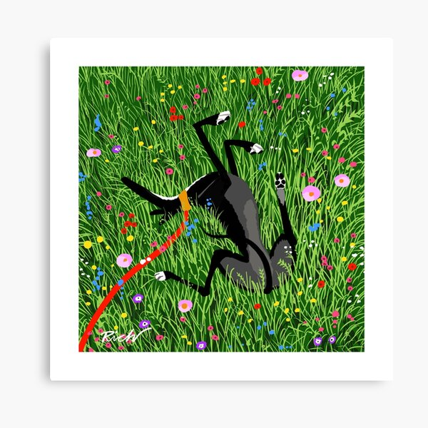 Roaching in the Wildflowers Canvas Print