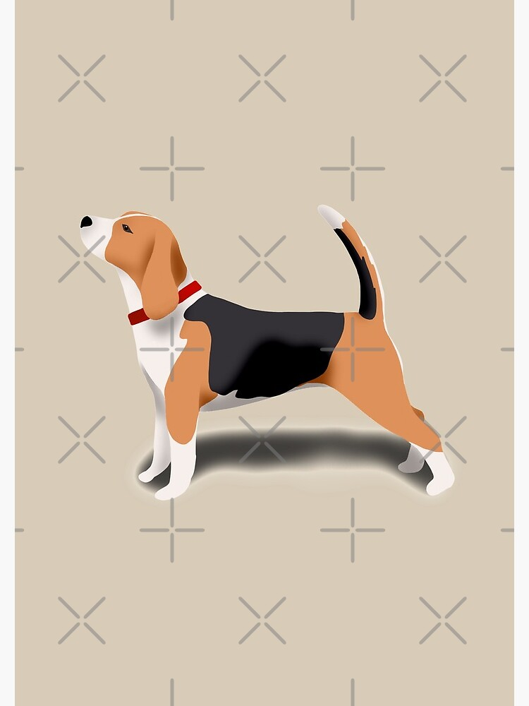 Beagle by kmg-design