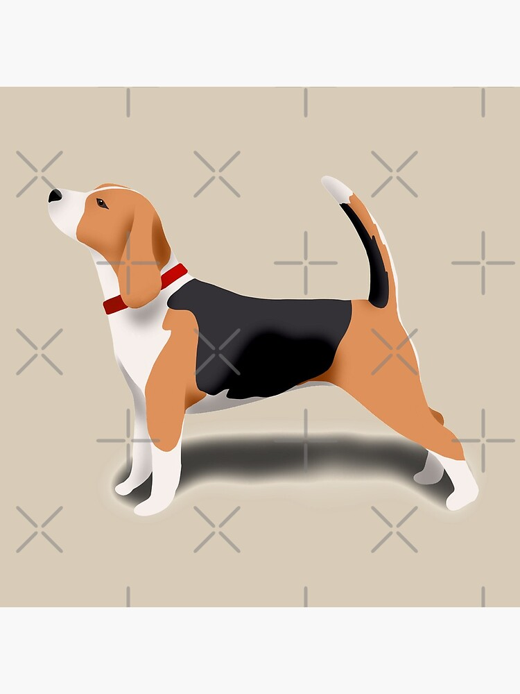 Beagle by kmg-design