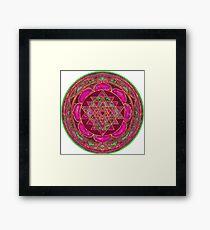 Lakshmi Yantra Mandala Framed Print