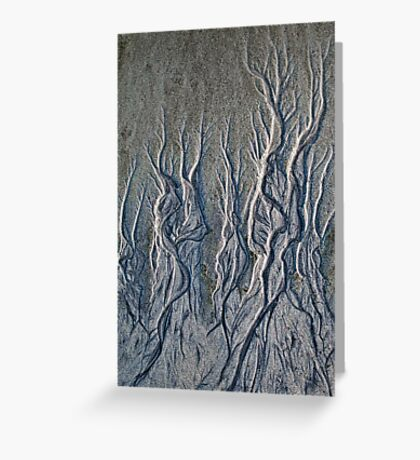 Curving tendrils Greeting Card