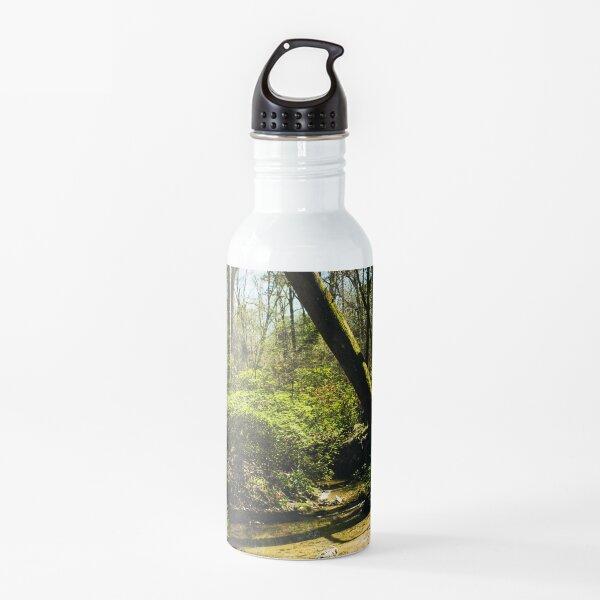 Landscape 40 Water Bottle