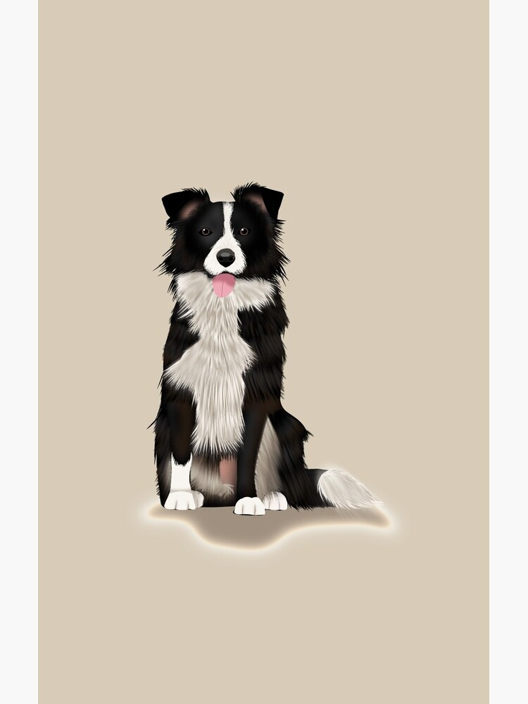 Border Collie by kmg-design
