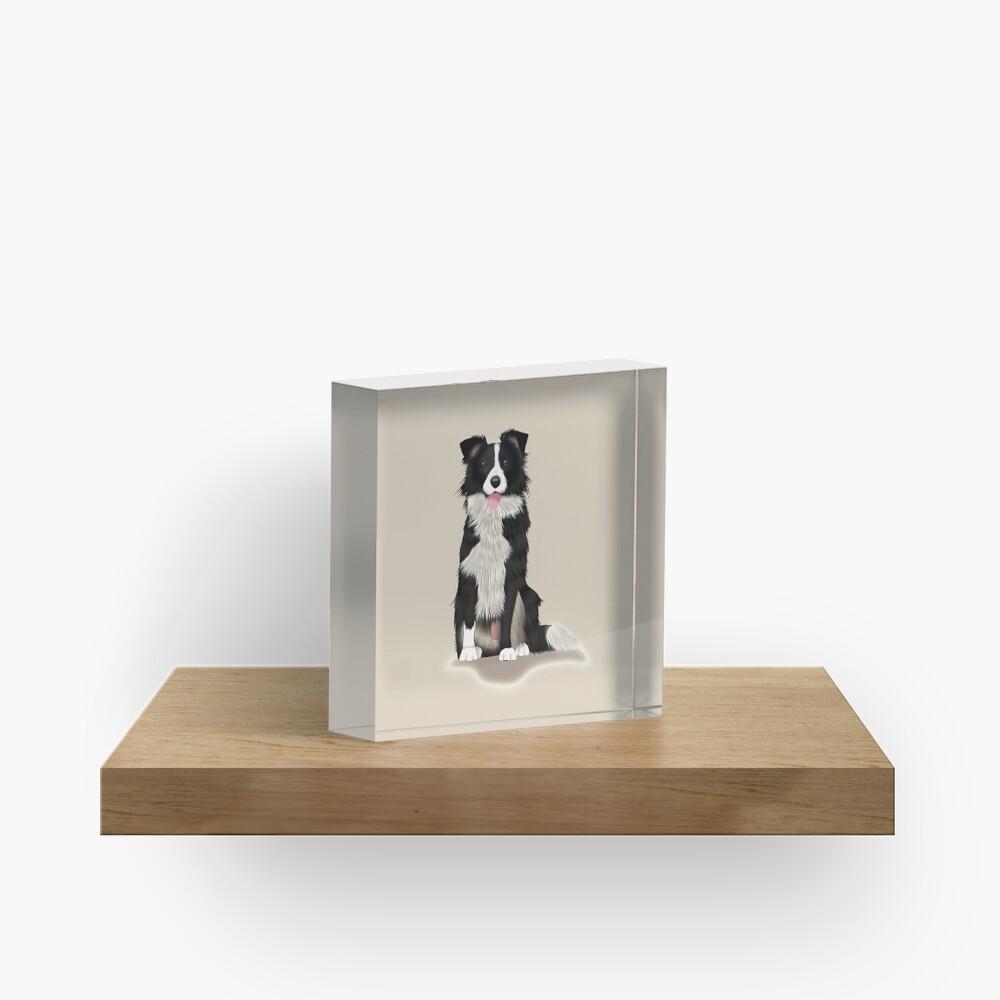 Border Collie Acrylic Block