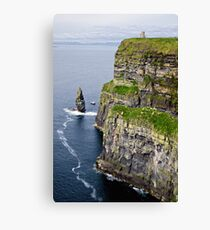 tower and cliffs Canvas Print