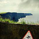 danger! by Michelle McMahon
