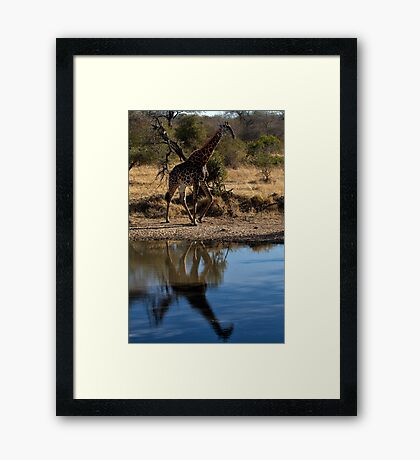 Tall Reflection Framed Print