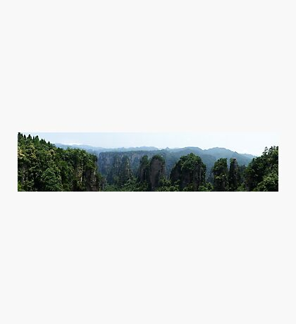 Stoneforest Panoramic Photographic Print