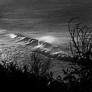 Sunrise Wave - Bells Beach by Mick Kupresanin