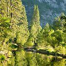 Merced River at Dawn - Yosemite National Park, California by Pete Paul