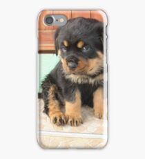 I Don't Need To Be Told I Am Cute ..... iPhone Case/Skin