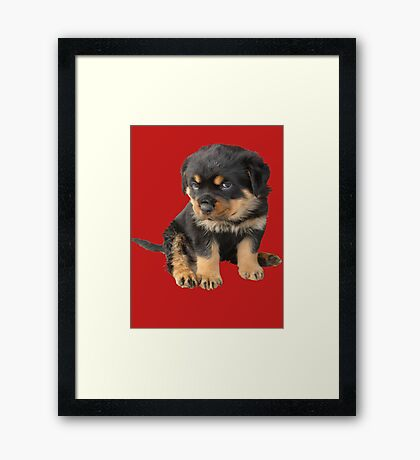 I Don't Need To Be Told I Am Cute Framed Print