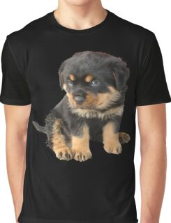 I Don't Need To Be Told I Am Cute Graphic T-Shirt
