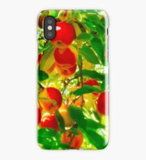 Red Apple Tree iPhone Case/Skin
