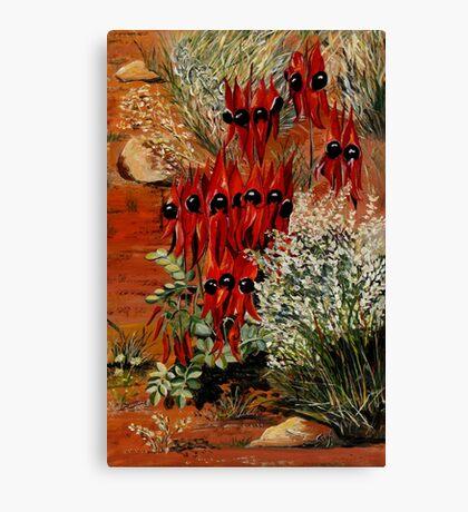 Sturt Desert Pea Canvas Print