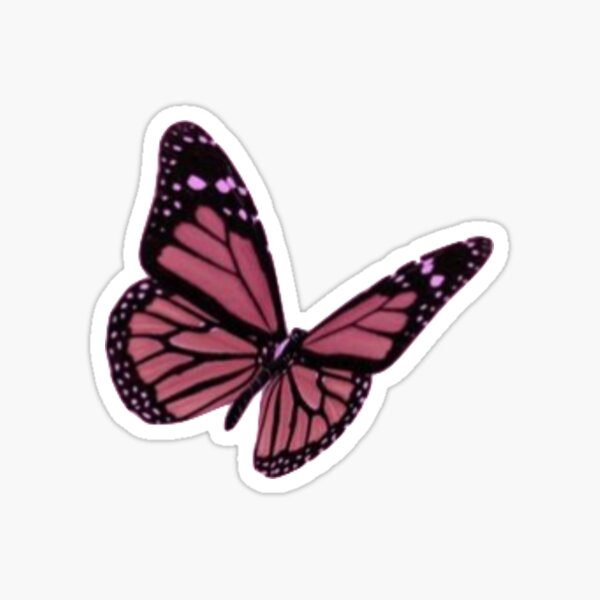 mariposa Pegatina