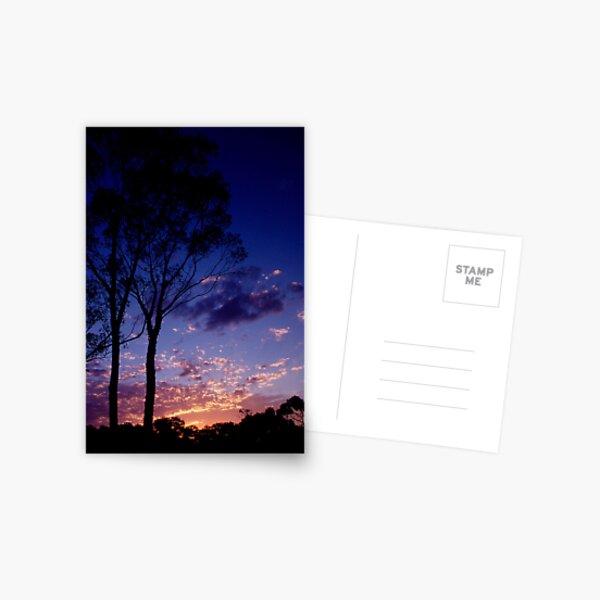 Sunset In Frankland Postcard