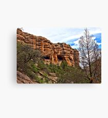 Gila Cliff Dwellings Canvas Print