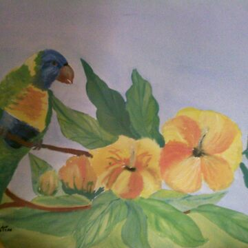 parrot by christine7