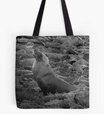 Australian Sealion on the rocks - Fitzgerald Bay, South Australia Tote Bag