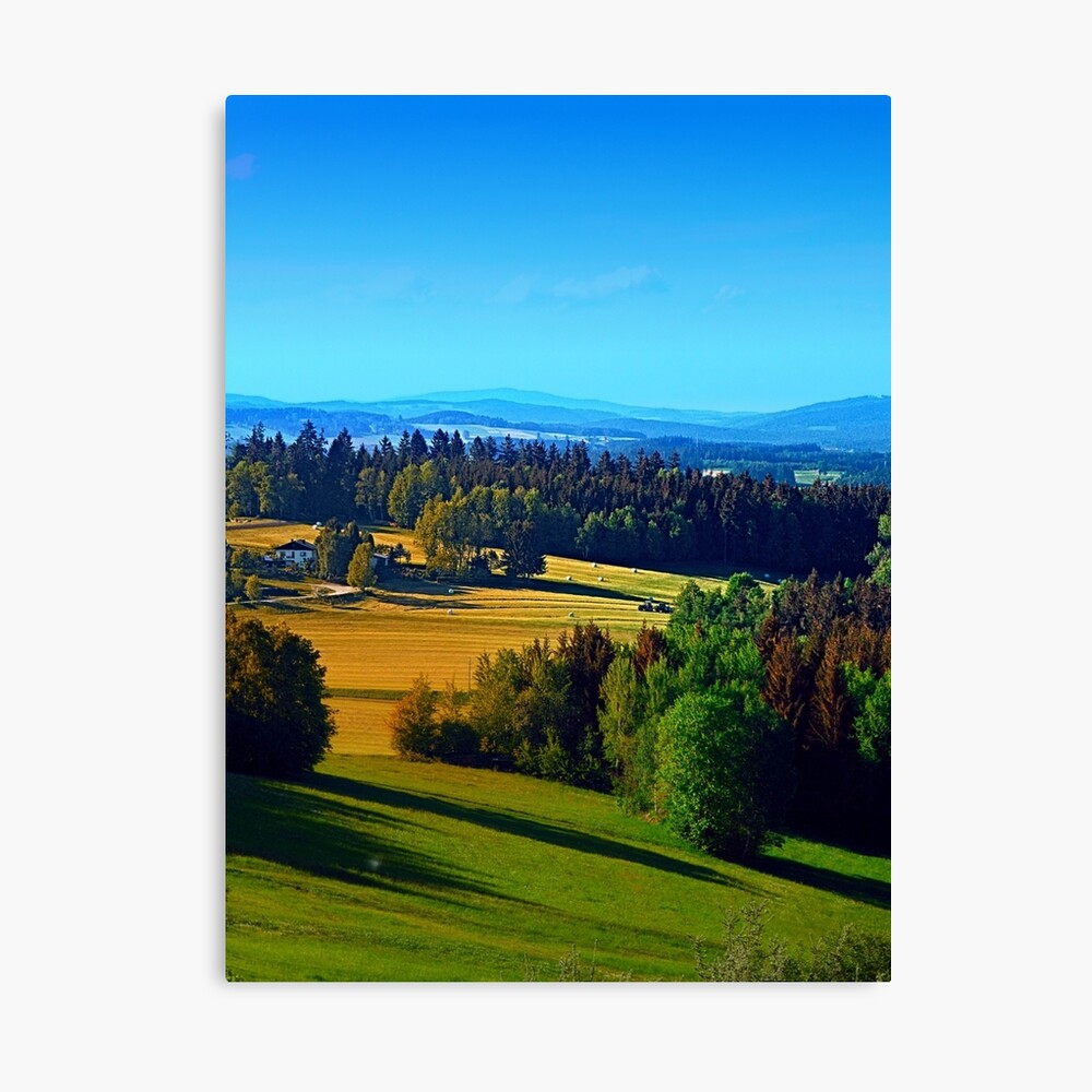 Springtime in the countryside Canvas Print