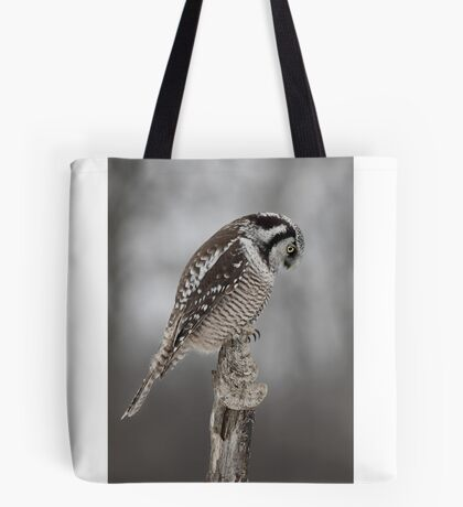 Northern Hawk Owl checks his claws Tote Bag