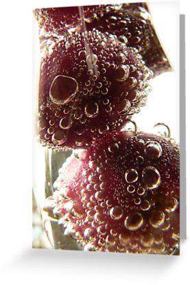 Fruitful by Michelle Clarke