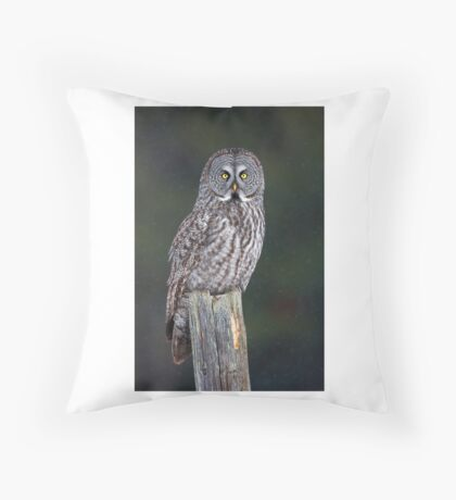 Great Grey Owl on Post Throw Pillow