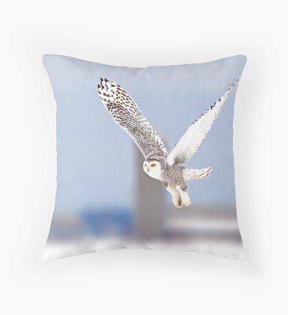 Along a country road - Snowy Owl Throw Pillow