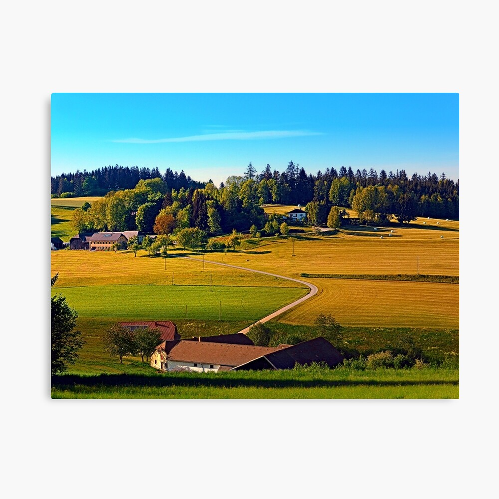 From farm to farm Canvas Print