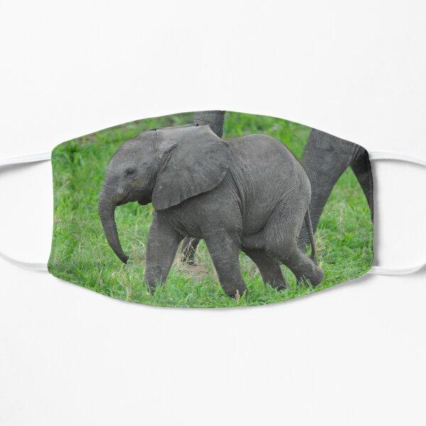 Baby African Elephant Mask