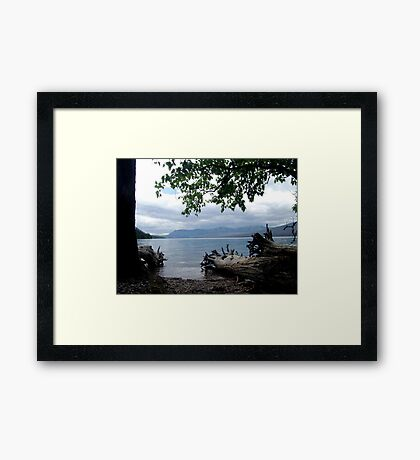 TREES WITH TOES, LAKE MC DONALD, GLACIER NATIONAL PARK Framed Print