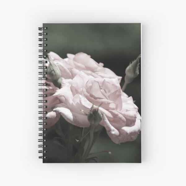Champagne Blush Roses in Chicago Botanical Garden Spiral Notebook