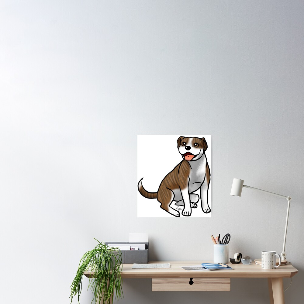 American Pit Bull Terrier - Brindle and White Poster