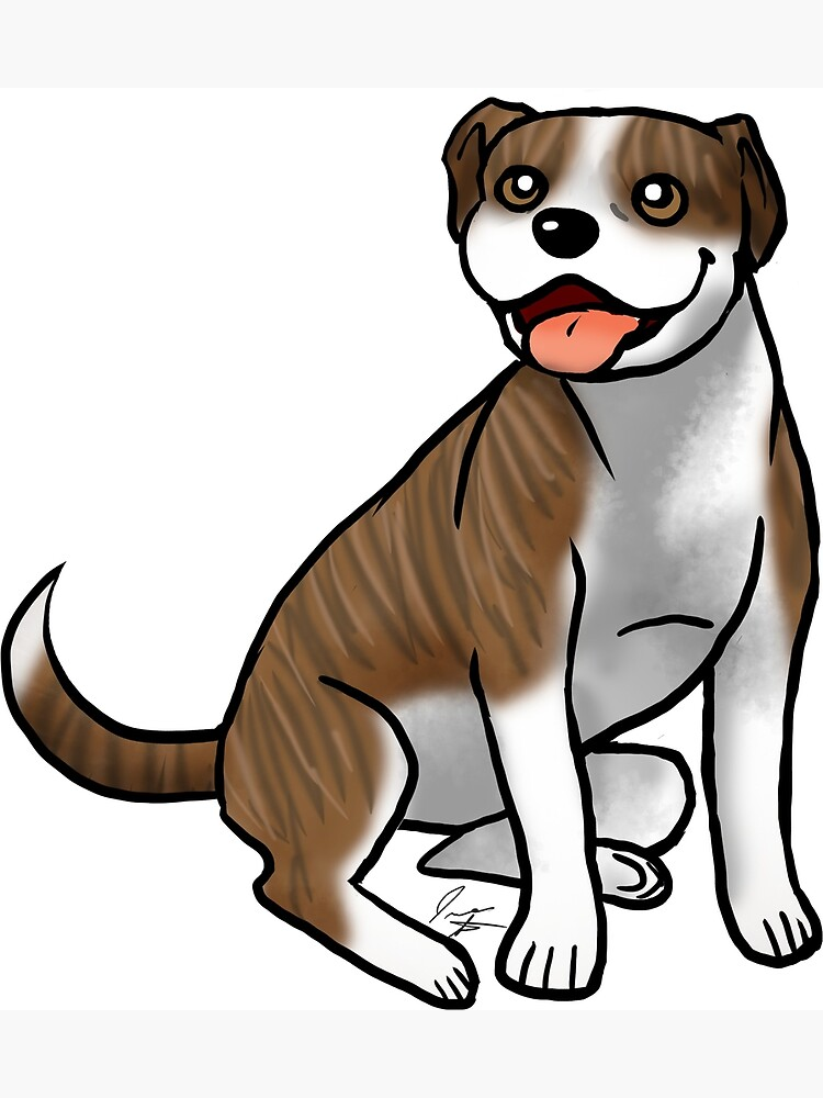 American Pit Bull Terrier - Brindle and White by jameson9101322
