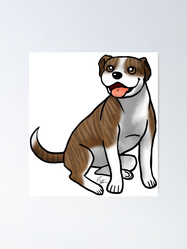 Alternate view of American Pit Bull Terrier - Brindle and White Poster
