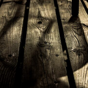 Sombre Wood by sachacohen19