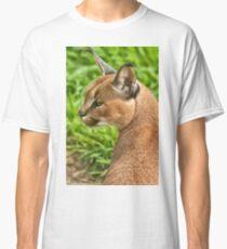 Caracal Luchs (Caracal Karakal) Classic T-Shirt