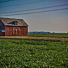 The Old Barn 2 by Adam Northam