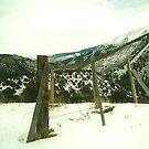 fence 2 by steveschwarz